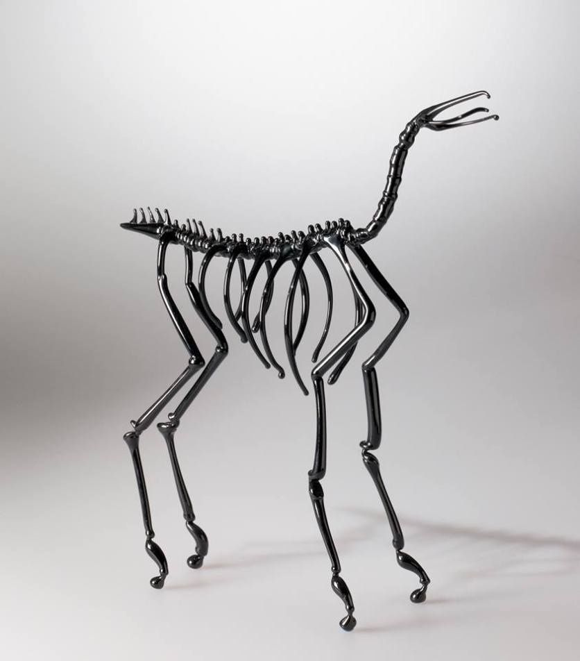 Horse Skeleton by Dafna Kaffeman