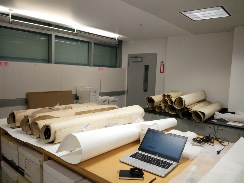Several rolls in the conservation lab