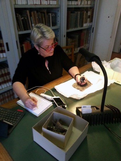 Examining the Torrita di Siena bottle in the library of the National Archaeological Museum, Florence, Italy.