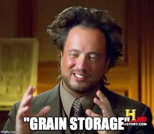 "Alien Guy from History Channel saying ""Grain Storage"""