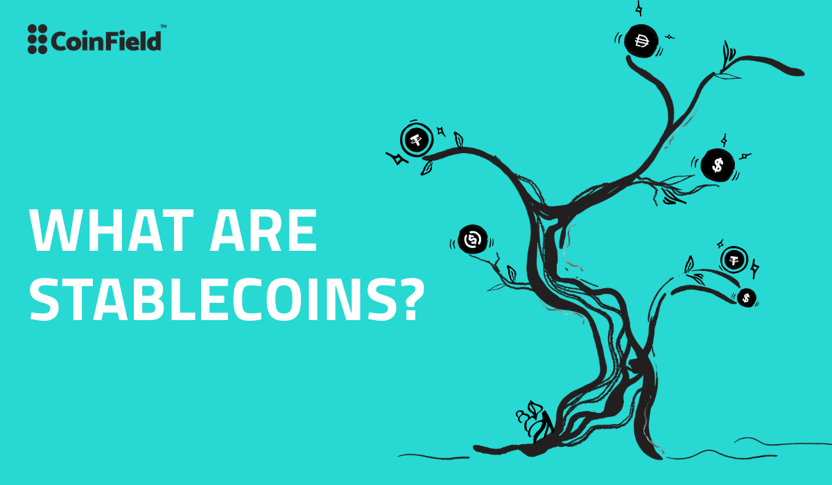 What are Stablecoins? – <bold>CoinField</bold>