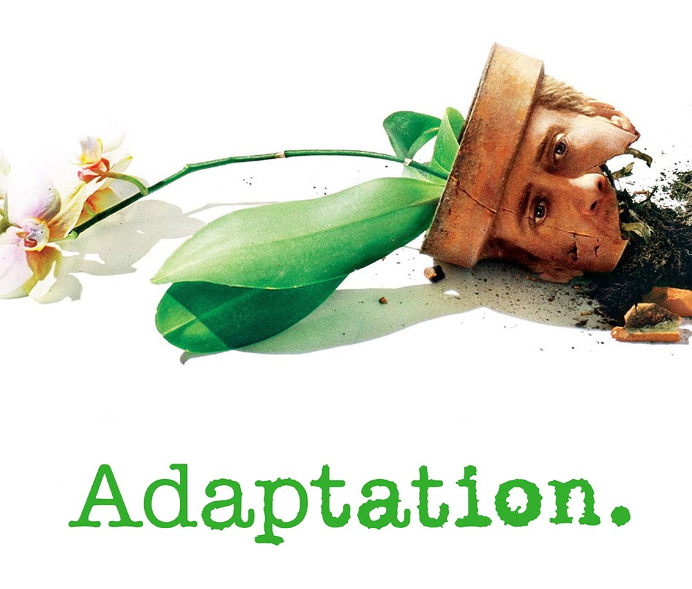 adaptation-5329dc4a9e36d.jpg