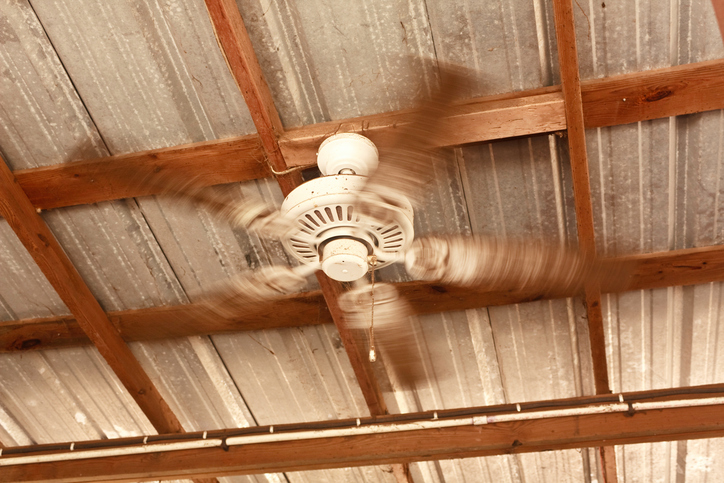 A spinning ceiling fan -- but it's not in a home, it's in a rural barn -- that's why you can see wooden rafters and a steel roof, and lots of dirt, dust, and cobwebs if you zoom in.