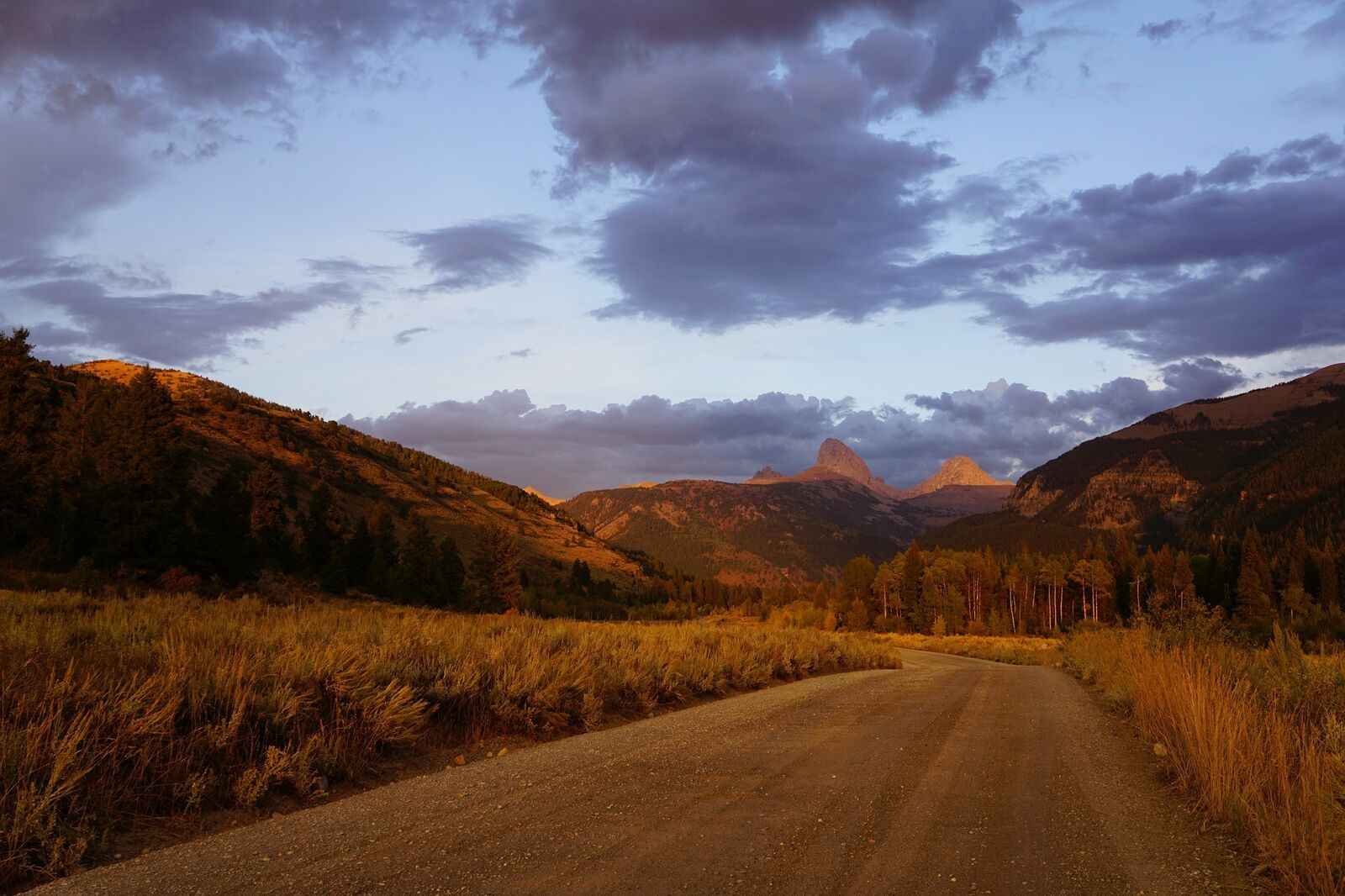 roadway during the fall season