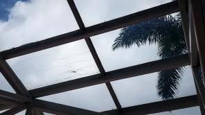 skylight-inspection-doubletree-24950-113929