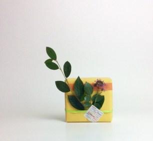 Papier cadeau bicolore orné de feuillage naturel