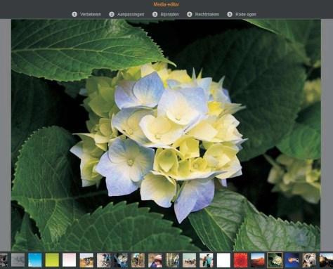 De opties in de Media-editor bij een stilstaande afbeelding die is geopend vanuit de bibliotheek.