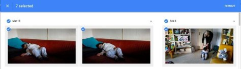 google-photos-dogs-3