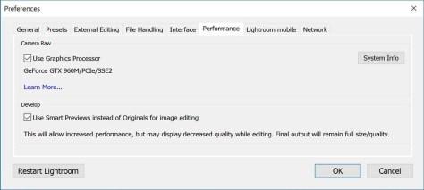De Preferences in Lightroom, tabblad Performance, voor het kiezen voor het werken met Smart Previews.