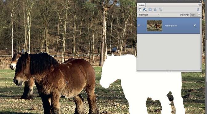 Wat zijn lagen in Photoshop Elements?