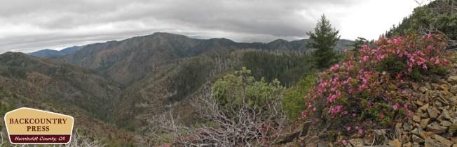 Kalmiopsis Wilderness