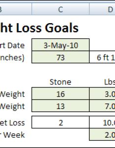 also weight loss tracker excel zaxa rh