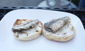Two of the three sardines in a can sit on English muffin halves, straight from the can.