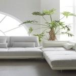 Budget Friendly Minimalist Bedroom Makeover Ideas Cort