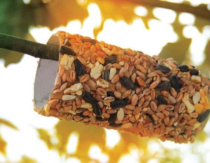 Make a Loo Roll Bird Feeder 7 Nature Themed Play Ideas for Kids