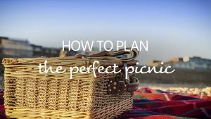 Plan the perfect picnic.