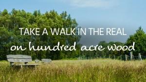 100 acre wood walk
