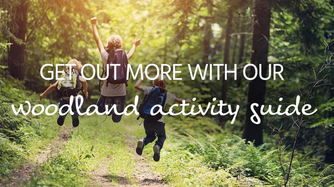 woodland activity guide title