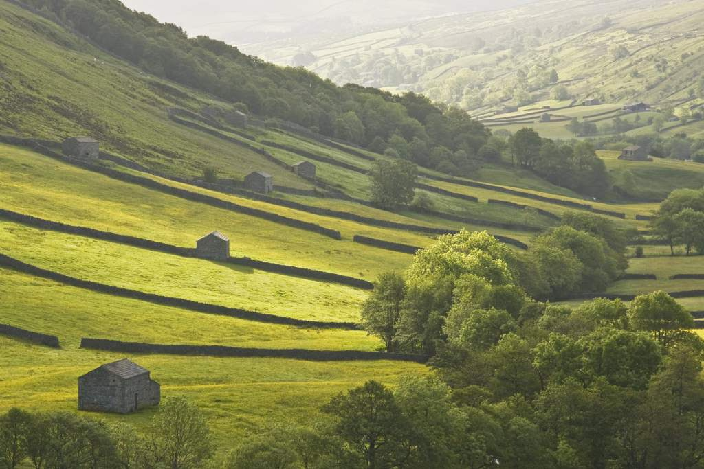 Green hills of the Yorkshire Dales