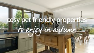 cosy pet friendly