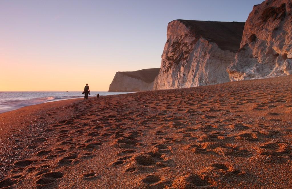 Dog friendly beaches Dorset