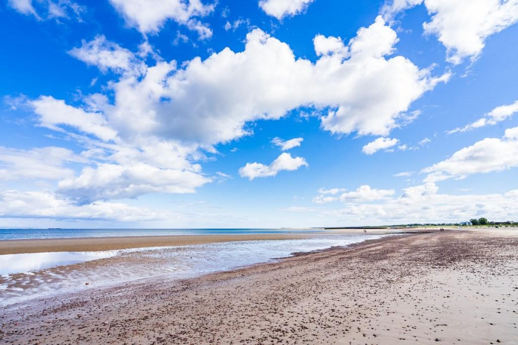 Dog friendly beach Scotland