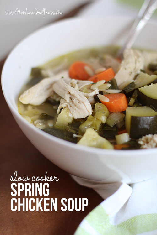 Slow Cooker Spring Chicken Soup Recipe
