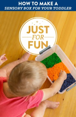 How to make a fun sensory box for your toddler.
