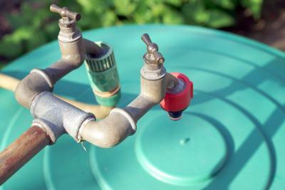 Sustentabilidade: reforçando conceitos teóricos, alunos montam sistema de captação de água e horta orgânica