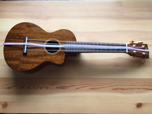 201606-ukulele_case-001