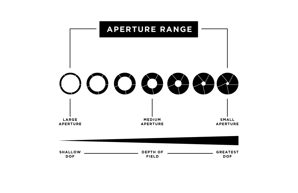 The Ultimate Guide to Learning Photography: What is Aperture?