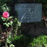 ¿Qué nos dirían hoy los seis jesuitas mártires del Salvador?