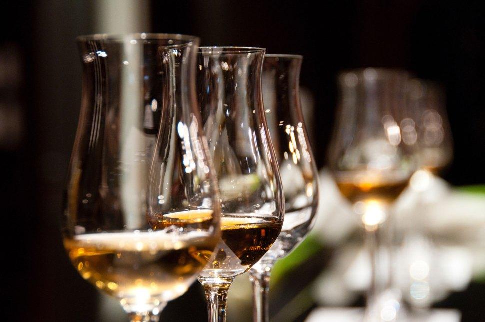 Winery Wedding Tasting