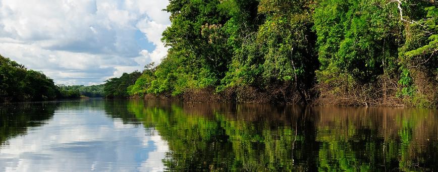 Amazon River Landscape In Brazil