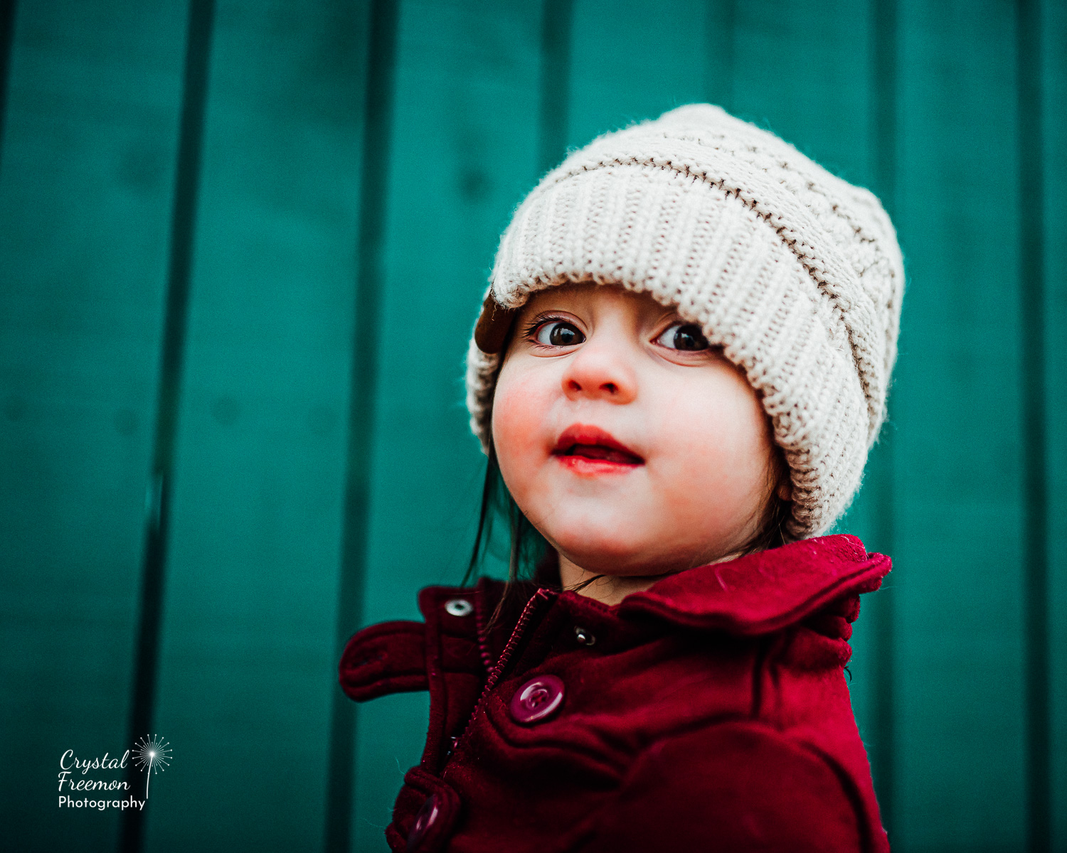 5 things Toddlers can teach us about life | Franklin TN Family Photographer