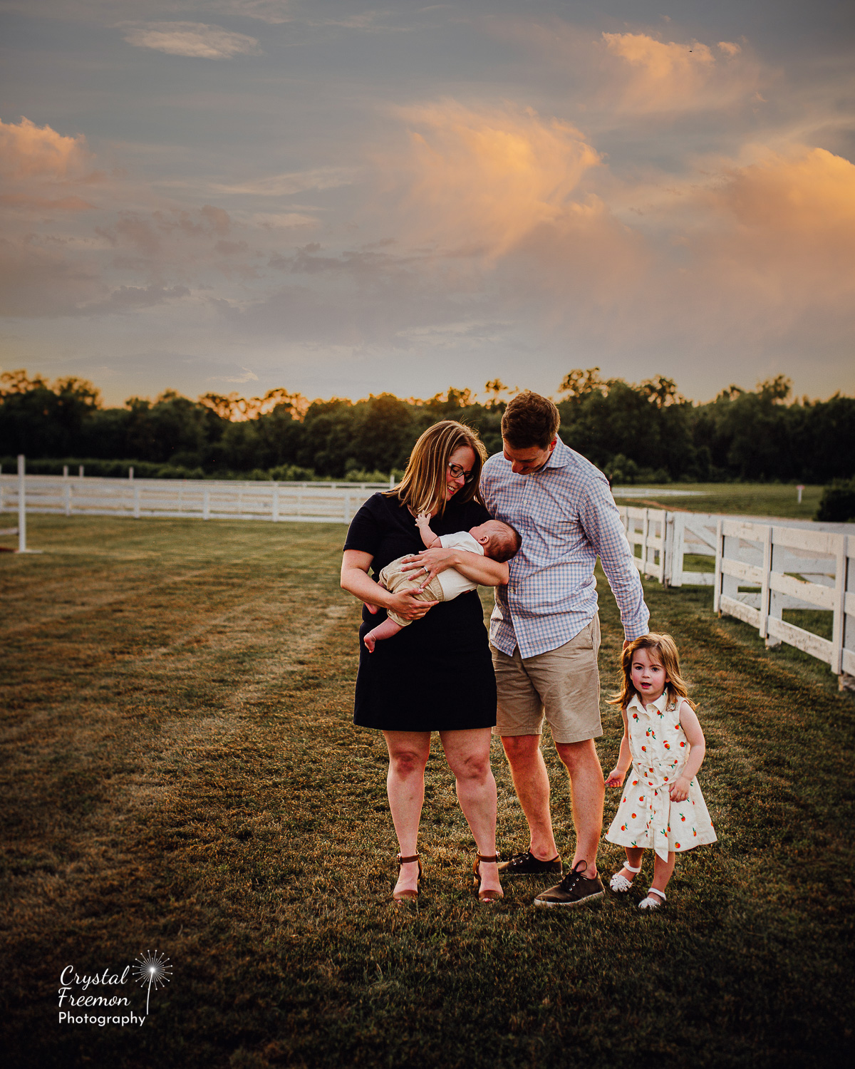 Family of Four Portrait Session at Harlinsdale Farms