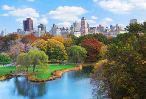 Fun and Frolic at Central Park