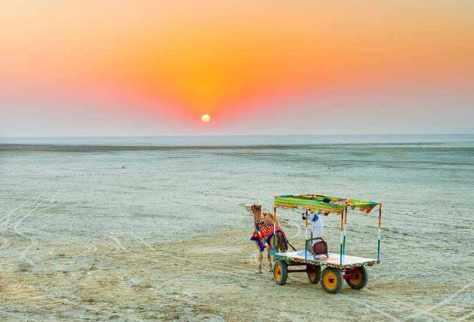 Rann of Kutch, Gujarat