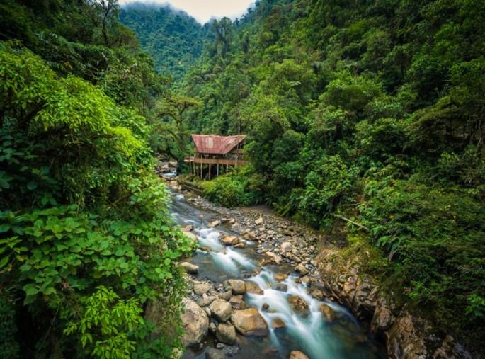EXPLORE THE REAL AMAZON AT PARQUE NACIONAL MANU