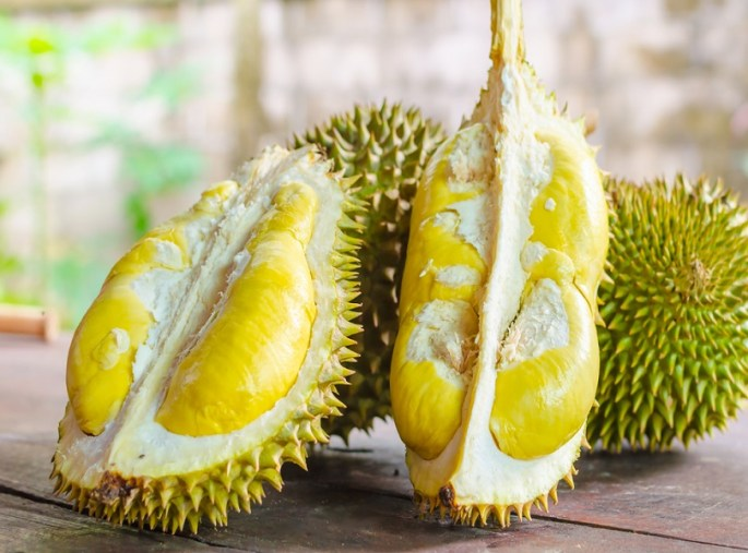 FEAST ON A DURIAN FRUIT