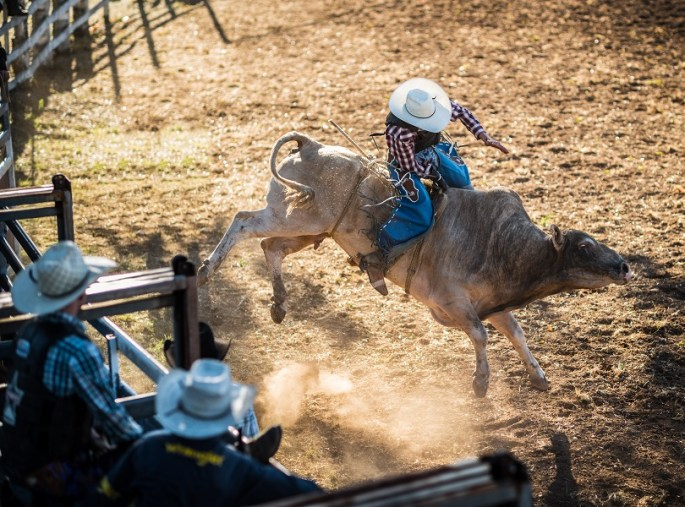 Bull Riding in Costa Rica