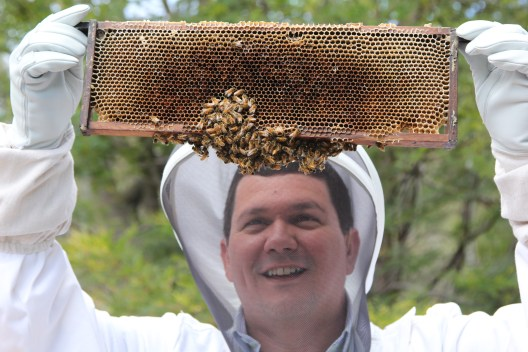 Man holding bee hive