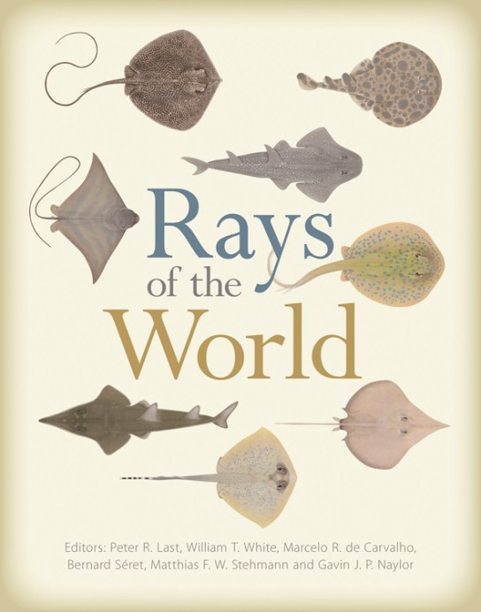 Cover of the book Rays of the World showing paintings of the upper sides of eight different ray species by artist Lindsay Marshall.