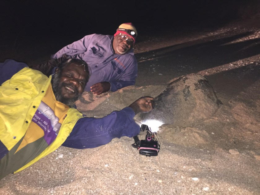 Two people lying in the sand next to a sea turtle at night with torches