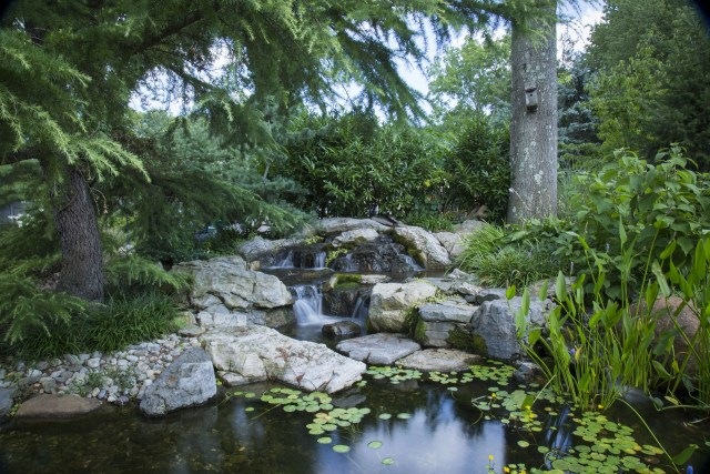 Filtragem do lago ornamental