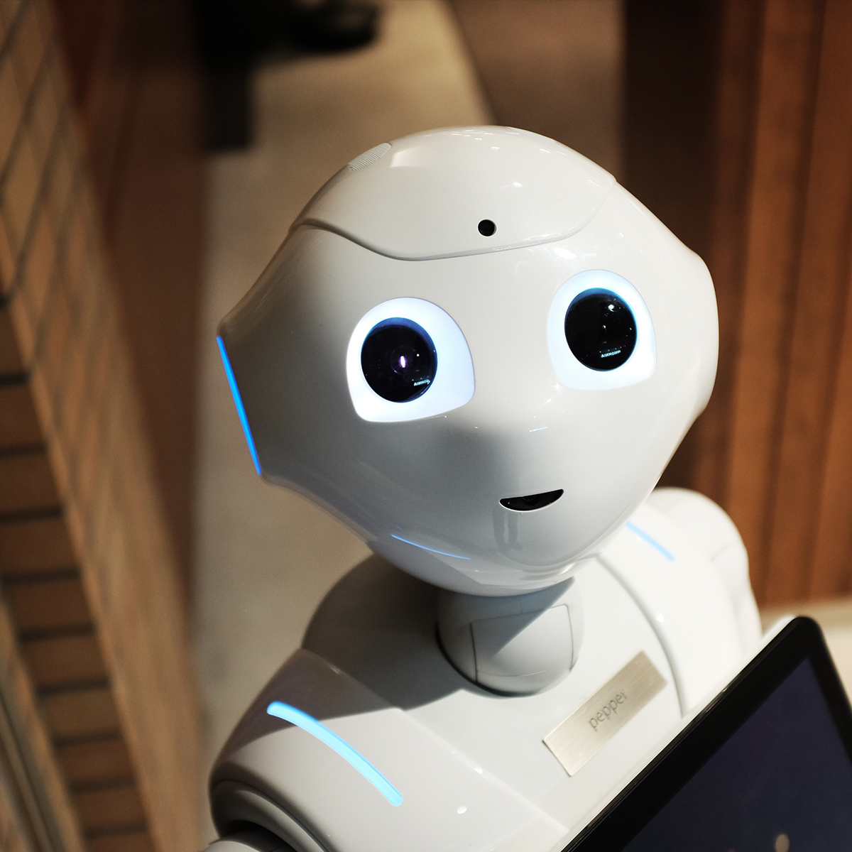Artificial Intelligence and Online Shopping