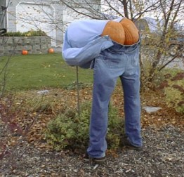 halloween-pumpkin-02