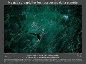 Ne pas surexploiter les ressources de la planète...