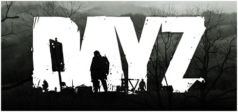 Playing DayZ