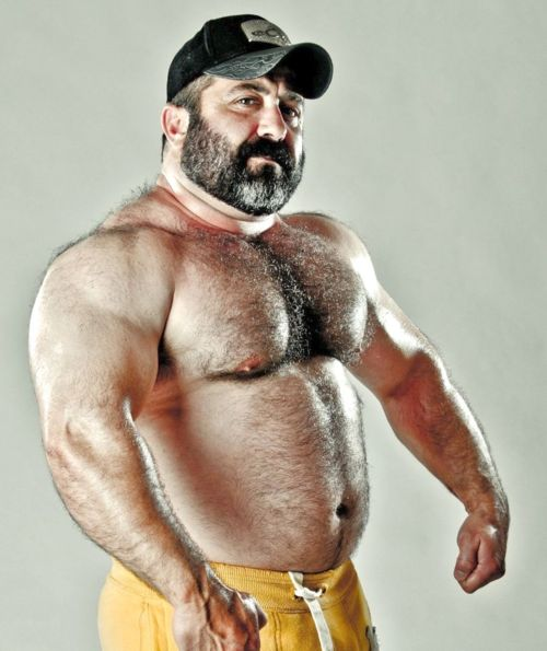 muscle-bear-men